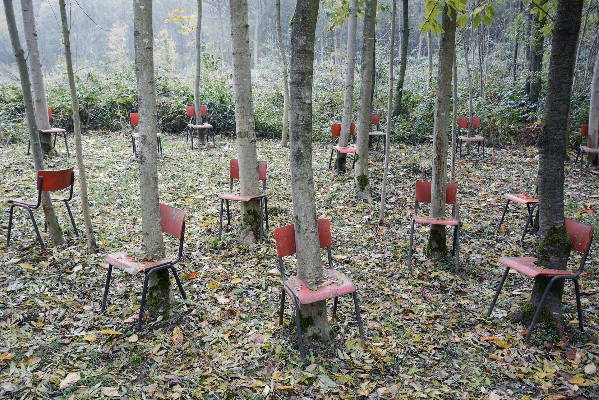 Tante piccole sedie rosse